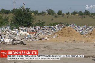Депутаты хотят в десять раз увеличить штрафы за неправильное обращение с мусором