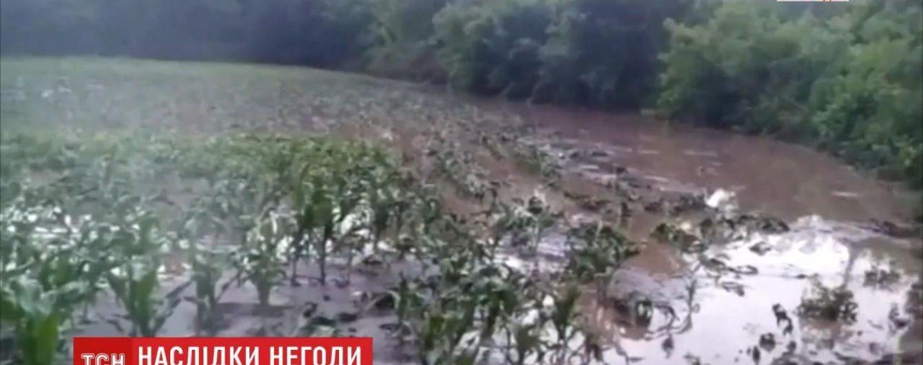 В Винницкой области прошли мощные ливни: за несколько минут затопило подворья