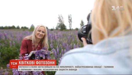 Фотосессии в полях цветов вышли на пик популярности в Украине