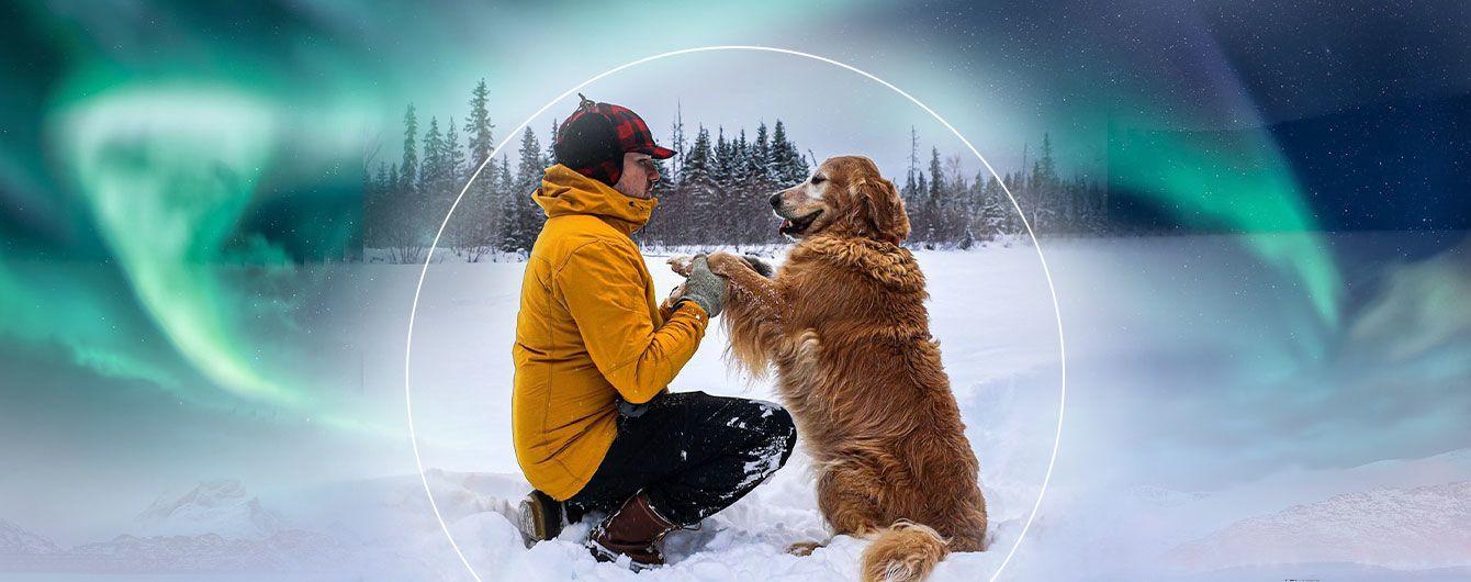 Стоматолог з Аляски став зіркою Instagram завдяки неймовірним фото собак