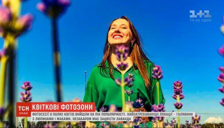 Українці наввипередки виїжджають у квіткові поля заради гарних світлин