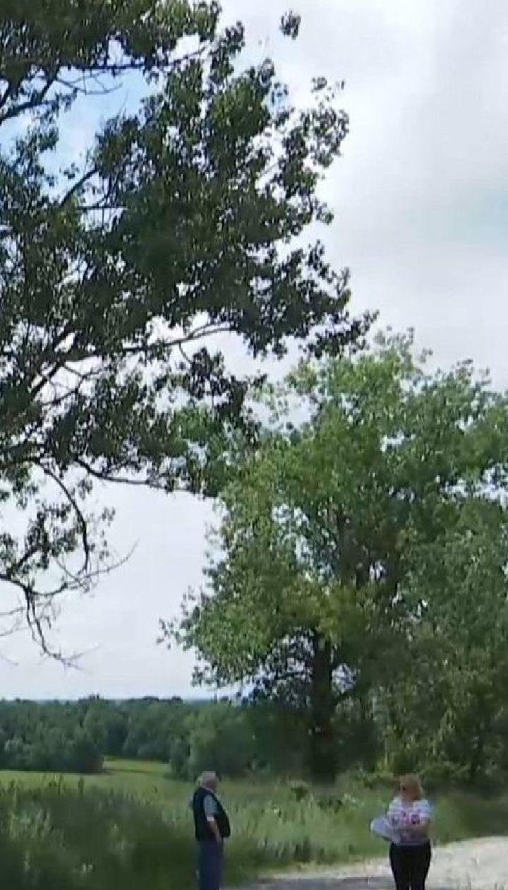 Небезпечний шлях: на дорогу у Тернопільській області постійно падають старі тополі