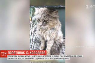 У Харківській області із занедбаного колодязя витягли кота, який просидів там кілька днів