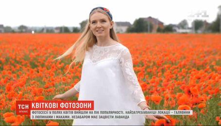 Люпини, маки і лаванда: фотосесії у полях квітів вийшли на пік популярності