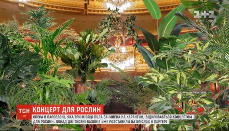 Опера в Барселоне, которая была закрыта на карантин, открывается концертом для растений