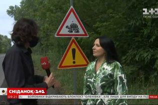 Осторожно, черепахи: как в Кременчуге появился уникальный дорожный знак