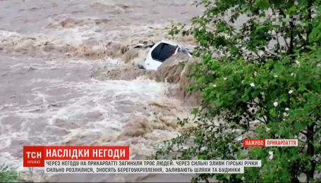 Ураганы в Украине: ливни и ветер оставили после себя разруху в регионах