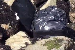 В США блогер снимал видео в TikTok, а нашел чемодан с человеческими останками