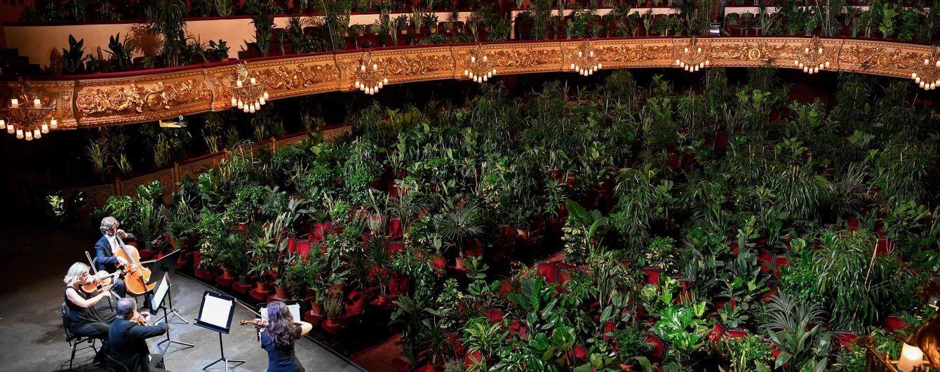 Опера Барселони зіграла концерт для 2 292 квітів: їх подарують медикам