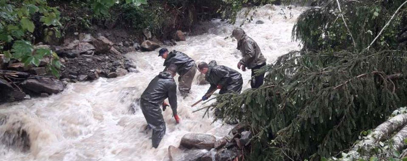 """""""Ліс – не дамба для утримання води"""": експерти назвали причини масштабних повеней у Карпатах"""