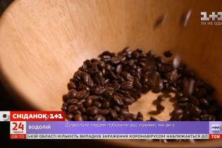 Из-за климатических изменений мир может остаться без кофе