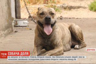 На аукционе за 500 гривен продали собаку, которая покусала несколько человек
