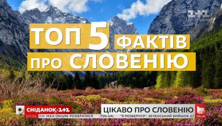 День державності Словенії: найцікавіші факти про країну