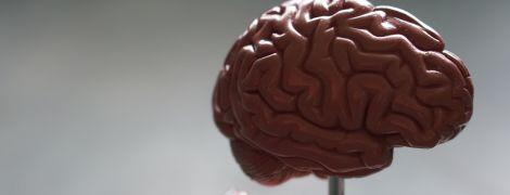 """Человек мог """"перепрофилировать"""" ключевую область мозга, когда научился читать — ученые"""