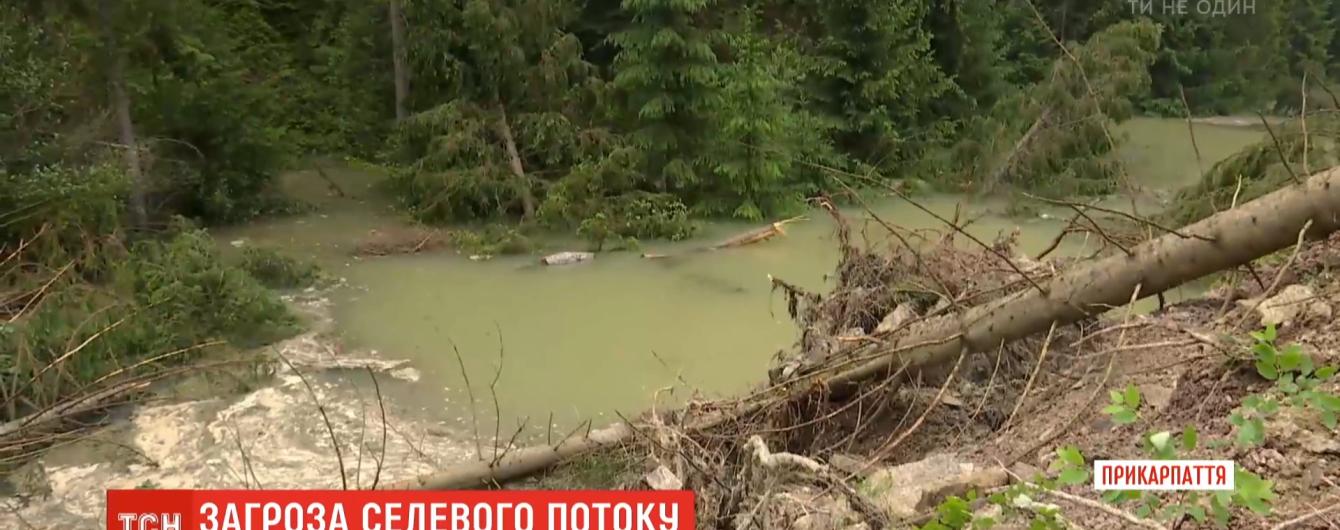 Майже дві сотні будинків під загрозою: в Івано-Франківській області через зсуви і паводок евакуюють людей