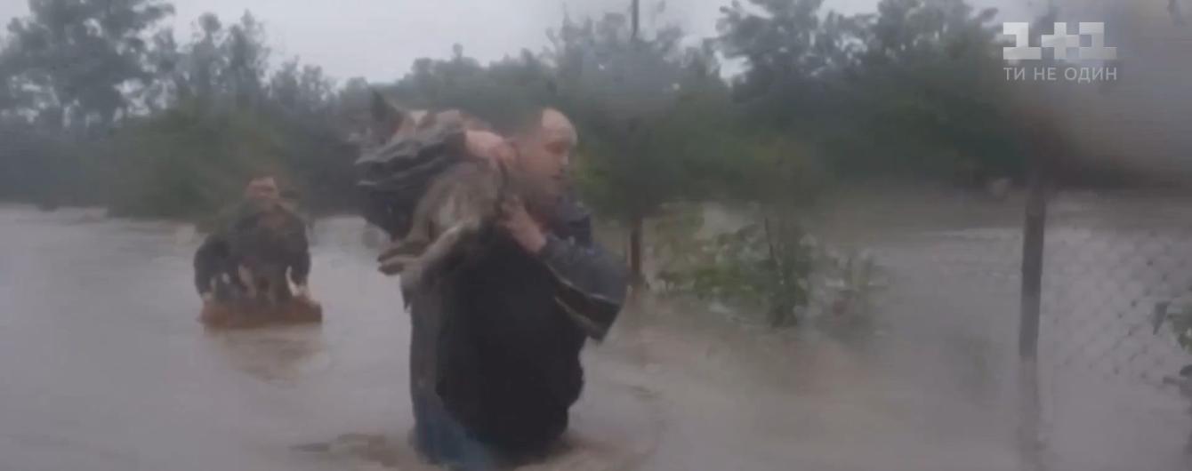 """""""В вольерах им была бы смерть"""": как спасали собак из приюта, который затопило в Ивано-Франковской области"""