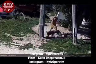 В Киеве на Воскресенских садах мужчина пытался зарубить собаку топором