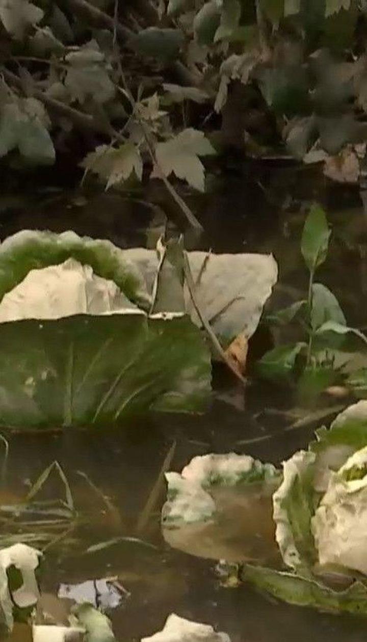 На Прикарпатті вода поступово спадає