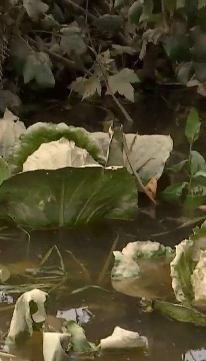 На Прикарпатье вода постепенно спадает