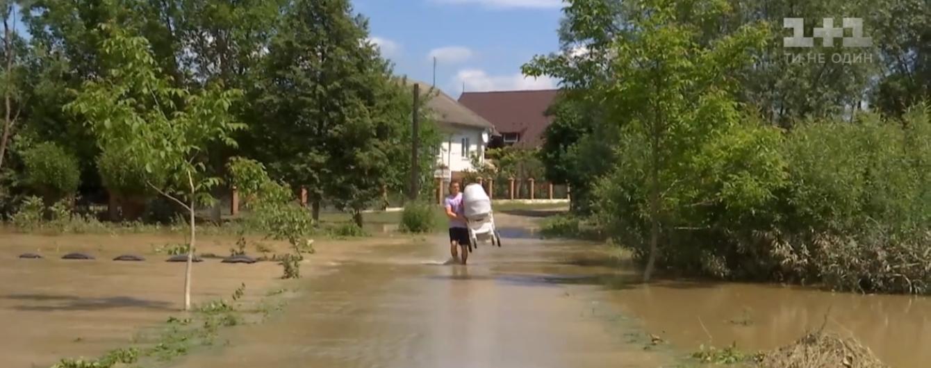 Все в иле, вокруг вонь и тучи комаров: как Прикарпатье оправляется от наводнения