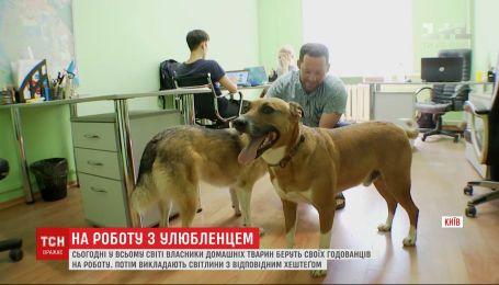 """Кудлаті та хвостаті: українці долучилися до акції """"візьми собаку на роботу"""""""