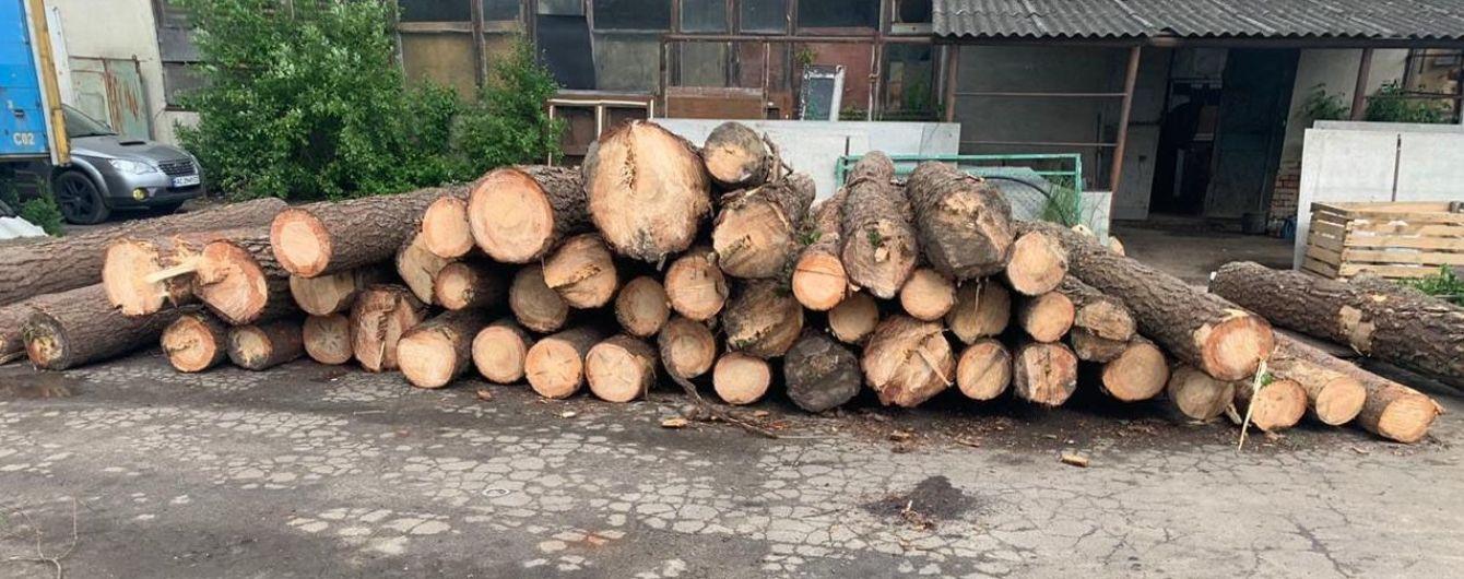 Посадовців лісництва в Івано-Франківській області підозрюють у незаконному продажі деревини
