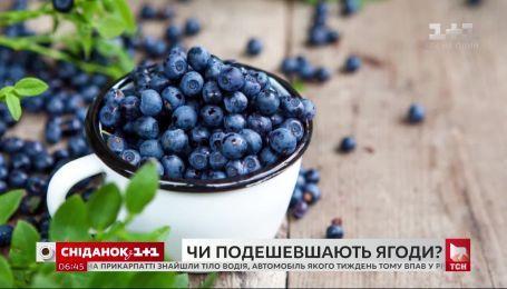Повлияла ли погода на качество ягод и что будет с ценами на них