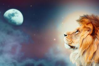Что мы знаем о людях, родившихся под знаком Льва