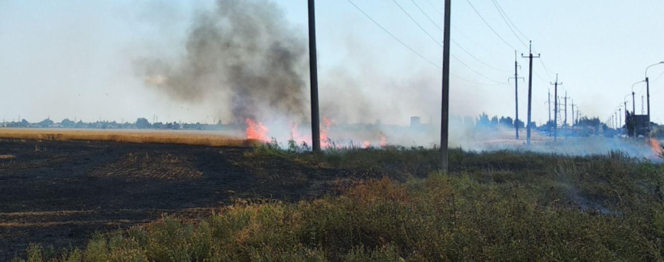 В Херсонской области из-за короткого замыкания электросети загорелось поле с пшеницей