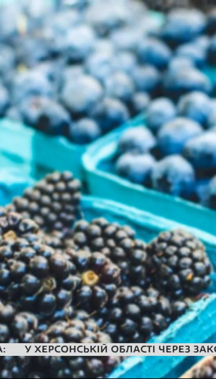 Якими овочами, фруктами та ягодами треба ласувати в липні