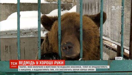 Медведи по заявкам: в Украине будут бесплатно отдавать конфискованных животных всем желающим