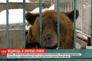 Ведмеді по заявках: в Україні будуть безкоштовно віддавати конфіскованих тварин усім охочим
