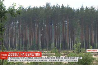 Спецдозвіл на видобуток бурштину може придбати кожен українець, але ризикує лишитись ні з чим