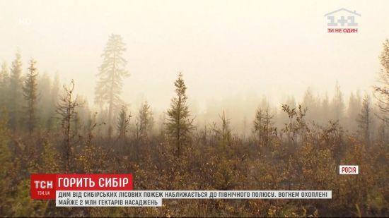 Сибір охопили масштабні пожежі: дим наближається до Північного полюсу
