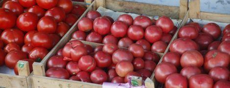 В Україні різко здорожчали помідори