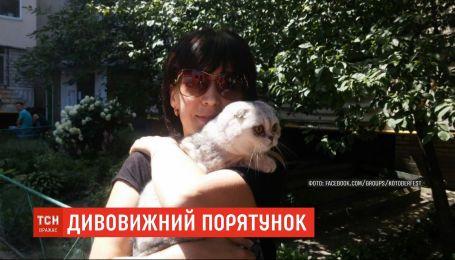 Рятувальники знайшли кішку, яка провела два тижні під завалами будинку на Позняках