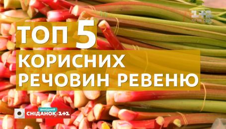 Ревінь, румбарбар: чим корисна ця рослина та з чим її їдять