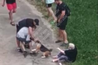 В Киеве на женщину с небольшим псом натравили стаффордширского терьера