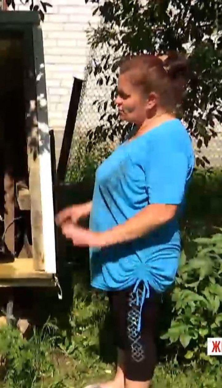 У Житомирській області селяни винуватять орендаря ставка у зневодненні криниць