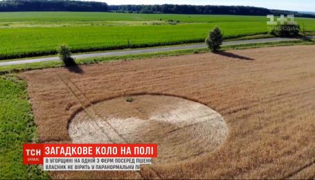 В Угорщині посеред пшеничного поля з'явилось загадкове коло