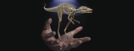 Вчені виявили на Мадагаскарі мініатюрного пращура динозавра
