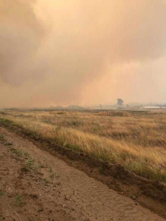 Майже всі загиблі через лісову пожежу у Луганській області задихнулися - поліція
