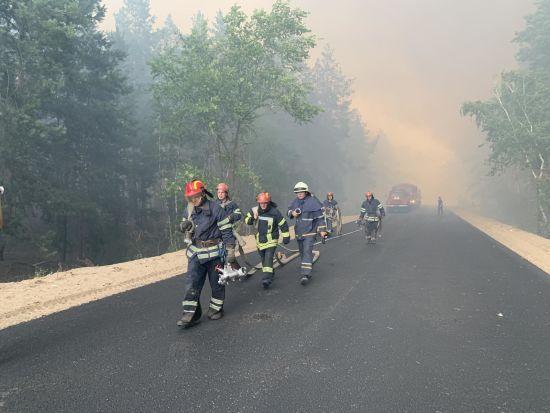 Масштабна лісова пожежа у Луганській області: знищено десятки будинків, загинула людина - ДСНС