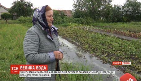 На Волині дощі затопили села, з берегів вийшли кілька річок