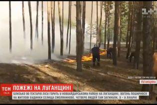 Масштабні пожежі у лісах Луганської області: полум'я знищило десятки будинків, є жертви