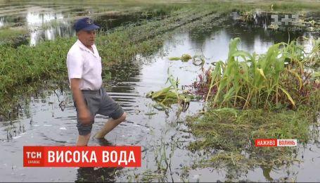 Мощные ливни затопили пять районов Волынской области
