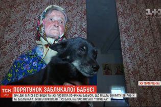 В Житомирской области бабушка заблудилась в лесу и провела три дня без воды и еды