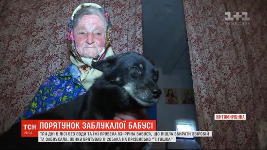 У Житомирській області бабуся заблукала в лісі і провела три дні без їжі та води