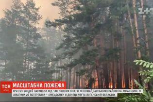 Внаслідок пожеж у Луганській області загинуло 5 людей, майже 30 у лікарні