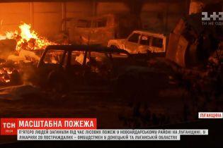 Лісові пожежі у Луганській області: п'ятеро загиблих, знищено півтори сотні будівель